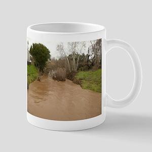 Guadalupe River San Jose Mugs