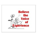 Voice of Experience Posters