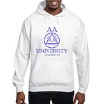 AA University Sweatshirt