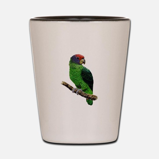 PERCHED Shot Glass