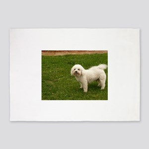 little white Maltese guard dog 5'x7'Area Rug