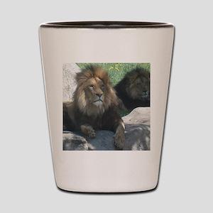 Royal Brothers Shot Glass