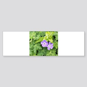 Cosy Couple of Purple Geranium Flowers Bumper Stic