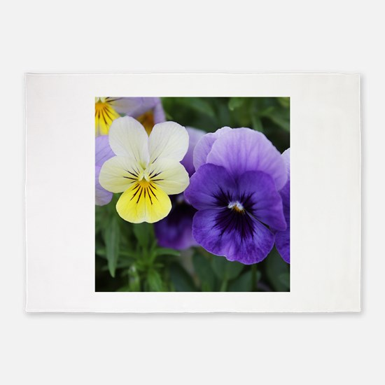Italian Purple and Yellow Pansy Flowers 5'x7'Area