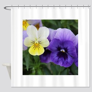 Italian Purple and Yellow Pansy Flowers Shower Cur