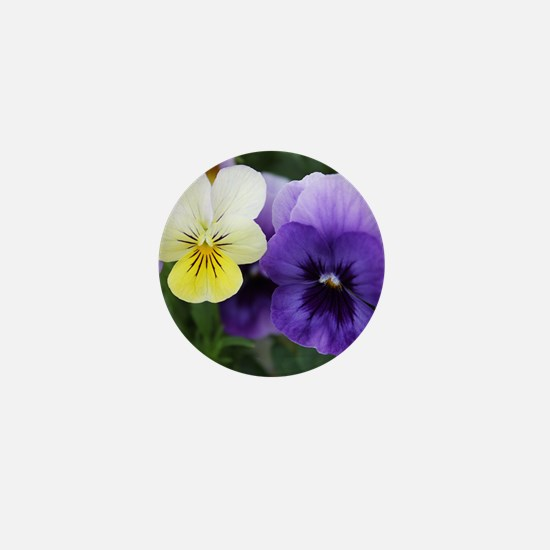 Italian Purple and Yellow Pansy Flowers Mini Butto