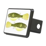Mbu Giant Freshwater Puffer fish Hitch Cover