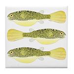 Mbu Giant Freshwater Puffer fish Tile Coaster