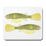 Mbu Giant Freshwater Puffer fish Mousepad