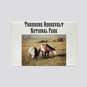 Theodore Roosevelt Nat Park Rectangle Magnets