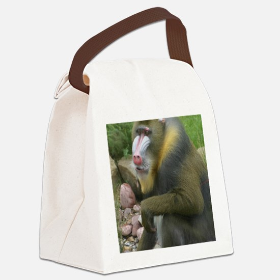 (NEW) Canvas Lunch Bag