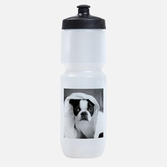 Boston Terrier Sports Bottle