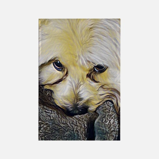 Cool Morkie Rectangle Magnet