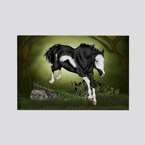 Black and White Overo Paint Horse Magnets