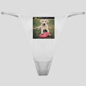 Labrador Retriever Classic Thong