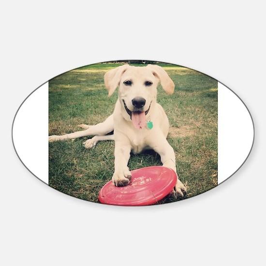Labrador Retriever Decal