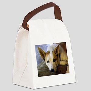 Nala Canvas Lunch Bag