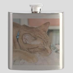 Zzzz Flask