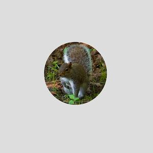 Gray Squirrel Mini Button