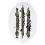 Ornate Bichir Oval Ornament