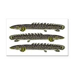 Ornate Bichir Rectangle Car Magnet