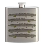 Ornate Bichir Flask