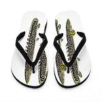 Ornate Bichir Flip Flops