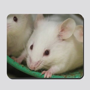 Mice Mousepad