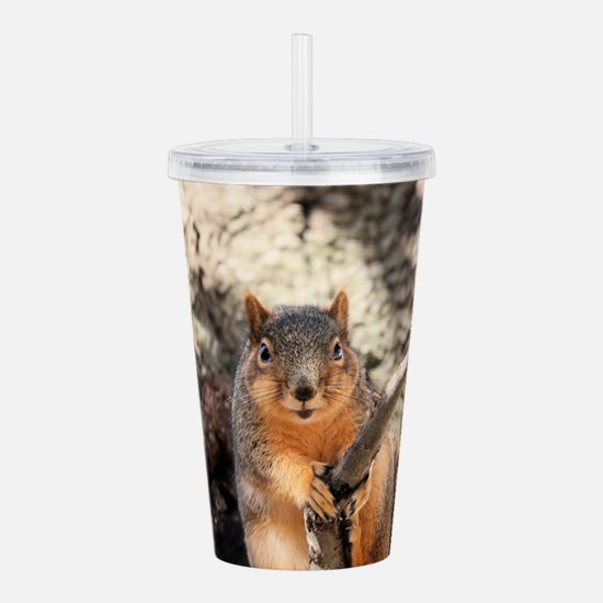 Squirrel Acrylic Double-wall Tumbler