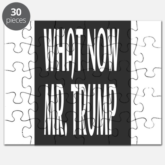 WHAT NOW MR.TRUMP Puzzle