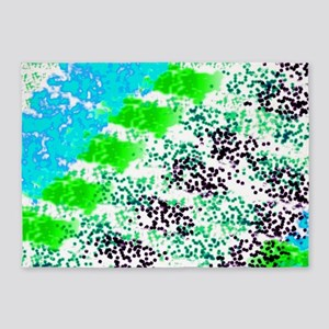 Sponge Print Green/Teal/Black 5'x7'Area Rug
