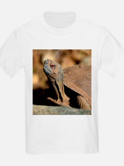 Desert Box Turtle T-Shirt