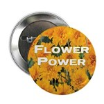 Coreopsis Flower Power 2.25