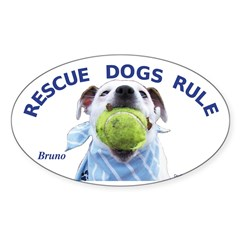 Bruno Oval Decal