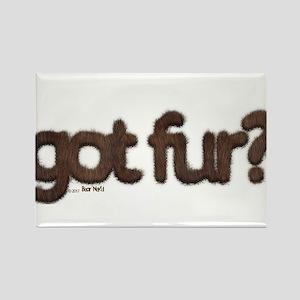 got fur? - Furry Fun - Gay Bear Pride - Br Magnets