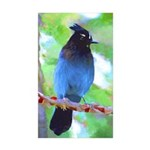 Steller's Jay Sticker (Rectangle 10 pk)
