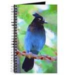 Steller's Jay Journal