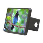 Steller's Jay Rectangular Hitch Cover
