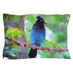 Steller's Jay Pillow Case