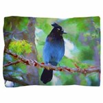 Steller's Jay Pillow Sham