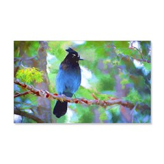 Steller's Jay Wall Decal