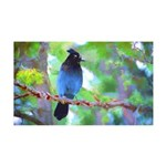 Steller's Jay 35x21 Wall Decal
