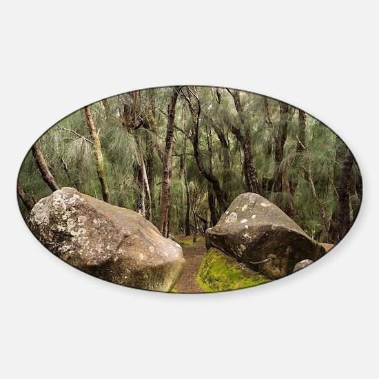 Palaau State Park Molokai Decal