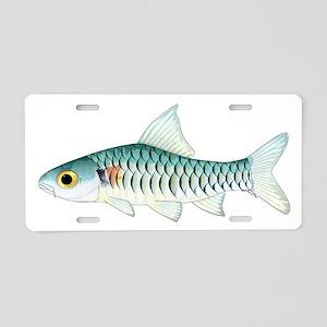 Congo Barb Aluminum License Plate