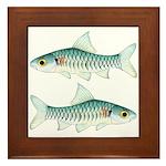 Congo Barb Framed Tile