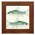 Congo Barb Framed Tile