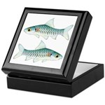 Congo Barb Keepsake Box