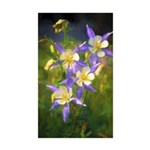 Colorado Blue Columbine Sticker (Rectangle 50 pk)