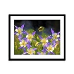 Colorado Blue Columbine Framed Panel Print