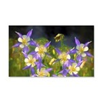 Colorado Blue Columbine 20x12 Wall Decal